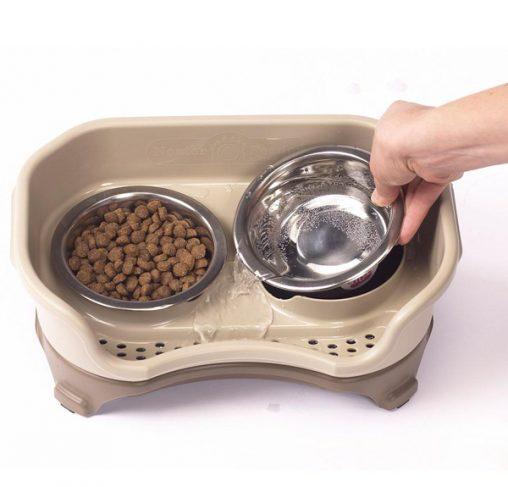 קערת האכלה מסודרת לכלבים קטנים וחתולים