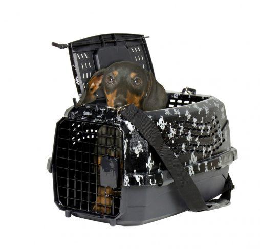 """מנשא לכלבים וחתולים גולגולות 2 דלתות - 58 ס""""מ"""