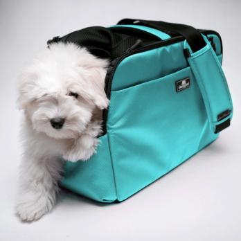 Sleepypod Atom – מנשא לכלבים וחתולים מורשה טיסה כחול ביצת רובין