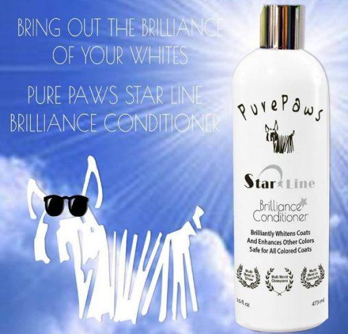 Pure Paws - מרכך ברק והדגשת לבן / וצבעים אחרים