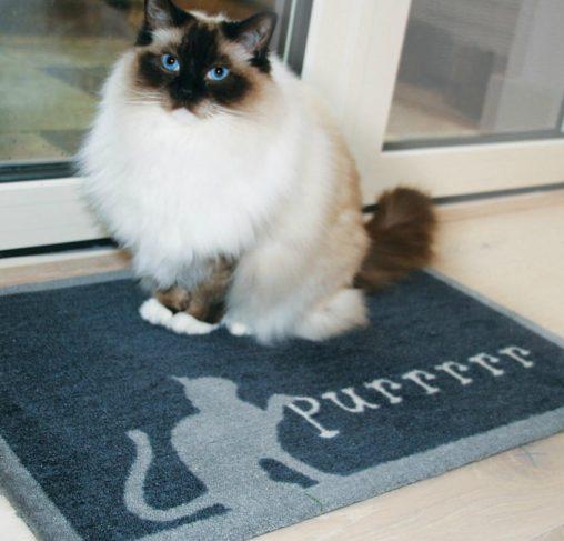 Howler & Scratch PURRR 2 - מחצלת חתולים 50X75