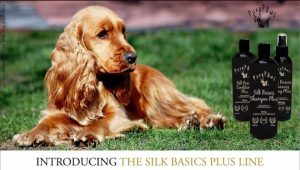 SILK-Basics-Plus
