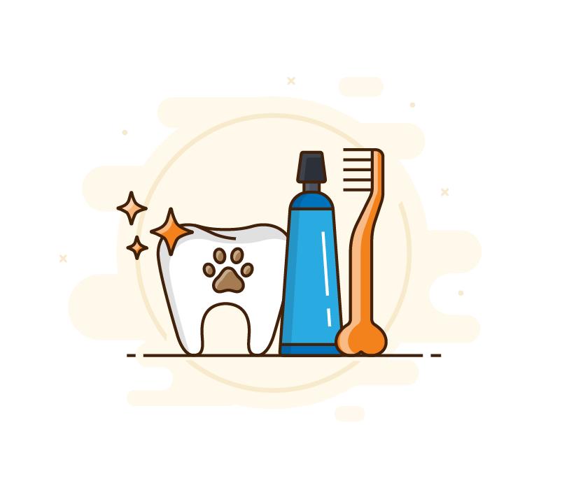 בריאות השיניים