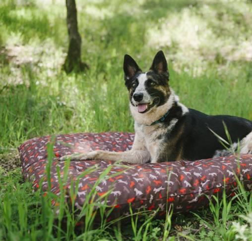 P.L.A.Y - מיטה מלבנית מוקה - RECTANGULAR -  Scout & About Outdoor Bed