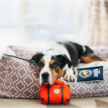 Pet Play – צעצוע בד בצורת תיק טיולים – ECO Play Globetrotter Collection Travel bag