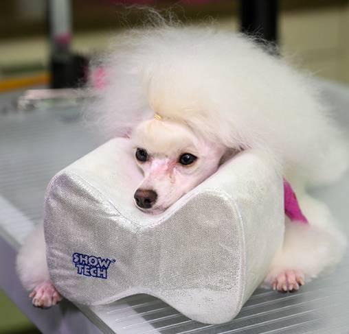 Show Tech - כרית נוחות לטיפוח הכלב Comfy Groom Pillow For Top Knot