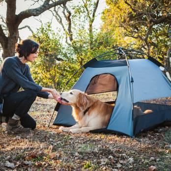 P.L.A.Y – אוהל לכלבים נהר – SCOUT & ABOUT OUTDOOR TENT RIVER