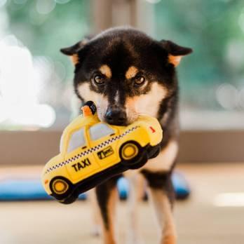 Pet Play – צעצוע בד בצורת מונית צהובה – ECO Play Canine Commute Collection
