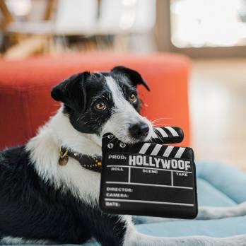 Pet Play – צעצוע בד בצורת לוח בימאי – ECO Play Cinema Collection