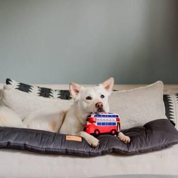 Pet Play – צעצוע בד בצורת אוטובוס אנגלי קומותיים – ECO Play Canine Commute Collection